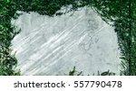 ivy climb the cement wall | Shutterstock . vector #557790478