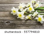 white daffodil flowers on old... | Shutterstock . vector #557794810