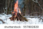 big campfire in the winter... | Shutterstock . vector #557802820