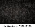 close upbackground and texture... | Shutterstock . vector #557817970
