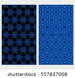 set of decorative floral lace... | Shutterstock .eps vector #557837008