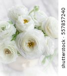 Small photo of Bouquet of white ranunculus.