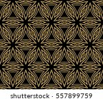 golden floral geometric lace... | Shutterstock .eps vector #557899759