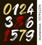 vector set of calligraphic... | Shutterstock .eps vector #557911270