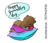 happy groundhog day vector... | Shutterstock .eps vector #557942950
