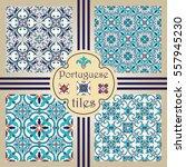 vector seamless texture... | Shutterstock .eps vector #557945230