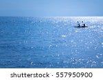 sea kayaking under clear blue... | Shutterstock . vector #557950900
