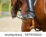 Jockey Riding Boot In The...