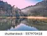 Stock photo pang ung forestry plantations maehongson province thailand sunrise on the lake in the forest 557970418