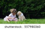 Stock photo cute toddler little two years old girl gives a kiss to a golden retriever puppy on a green widow in 557980360