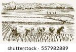 asian farmers working on field. ... | Shutterstock .eps vector #557982889