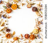 frame made of yellow dry...   Shutterstock . vector #558053284