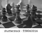 chess | Shutterstock . vector #558063316