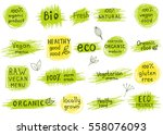 collection of  100  organic ... | Shutterstock .eps vector #558076093