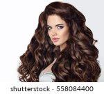 long hair. beautiful brunette...   Shutterstock . vector #558084400