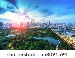 wonderful evening period... | Shutterstock . vector #558091594