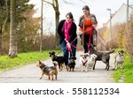 Dog Sitters Walking Their...