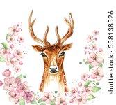 hand drawn deer  spring pink... | Shutterstock . vector #558138526