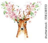 Beautiful Deer  Big Antlers ...