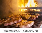 grilled meat in barbecue with... | Shutterstock . vector #558204970