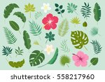 vector set of tropical leaves.... | Shutterstock .eps vector #558217960