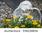 angel and yellow flowers on a... | Shutterstock . vector #558228856