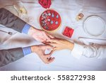 celebrating anniversary or san...   Shutterstock . vector #558272938