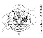 animal head triangular icon  ... | Shutterstock .eps vector #558288988