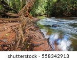 view in the border of takhong... | Shutterstock . vector #558342913