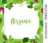 Organic Banner With Square...