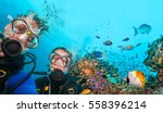 couple of scuba divers looking... | Shutterstock . vector #558396214