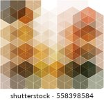 vector   abstract decorative... | Shutterstock .eps vector #558398584