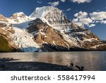 panoramic view of mt robson... | Shutterstock . vector #558417994