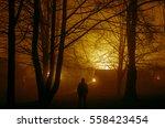 Strange Silhouette In A Dark...