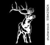 deer isolated on black... | Shutterstock .eps vector #558425824
