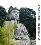 buddha statue in chinese temple ... | Shutterstock . vector #558492436