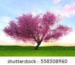3d cg rendering of a cherry tree | Shutterstock . vector #558508960