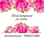 vintage delicate invitation... | Shutterstock . vector #558537688