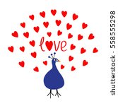 peacock open red heart set tail.... | Shutterstock .eps vector #558555298