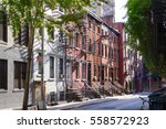 sunshine on the trees ...   Shutterstock . vector #558572923