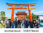 fushimi inari shrine  japan  ... | Shutterstock . vector #558578644