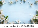 Stock photo spring background fresh flower on blue background 558613789