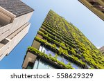 skyscrapers with flowers and... | Shutterstock . vector #558629329