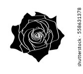rose silhouettes isolated... | Shutterstock .eps vector #558631378