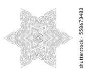 vector illustration of oriental ... | Shutterstock .eps vector #558673483