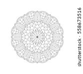 vector illustration of oriental ... | Shutterstock .eps vector #558673516