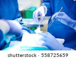 surgical equipment used during... | Shutterstock . vector #558725659