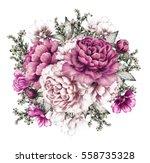 purple peonies. watercolor... | Shutterstock . vector #558735328