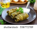 stuffed cabbage with meat and... | Shutterstock . vector #558772789