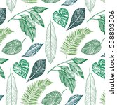 tropical palm leaves pattern | Shutterstock .eps vector #558803506